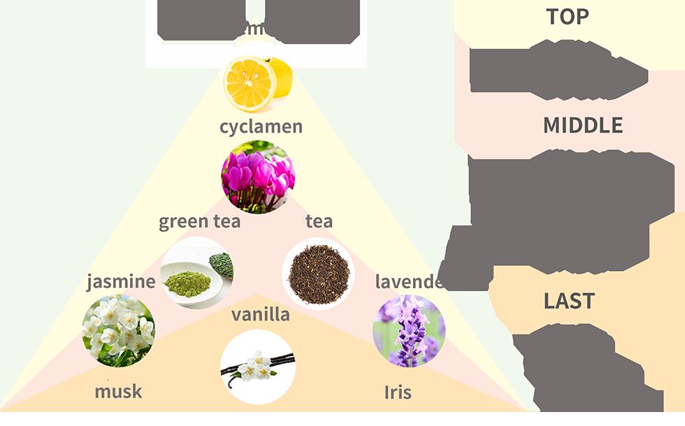 TOP:レモン,シクラメン/MIDDLE:グリーンティー,ジャスミン,紅茶,ラベンダー/LAST:バニラ,ムスク,イリス
