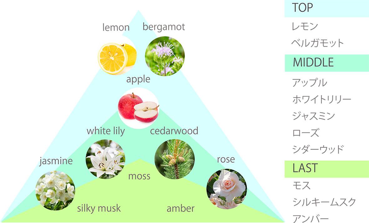 TOP:レモン,ベルガモット/MIDDLE:アップル,ホワイトリリー,ジャスミンローズ,シダーウッド/LAST:モス,シルキームスク,アンバー