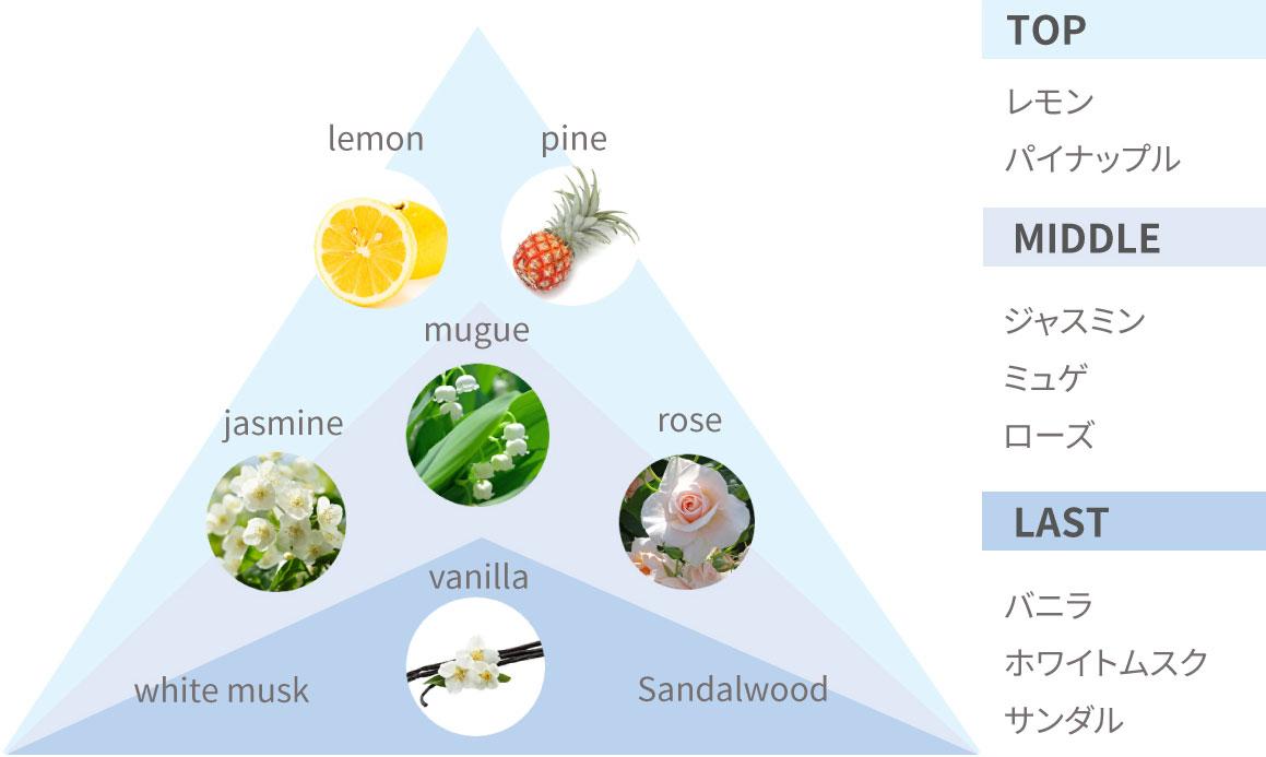 TOP:レモン、パイナップル/MIDDLE:ジャスミン、ミュゲ、ローズ/LAST:バニラ、ホワイトムスク、サンダル
