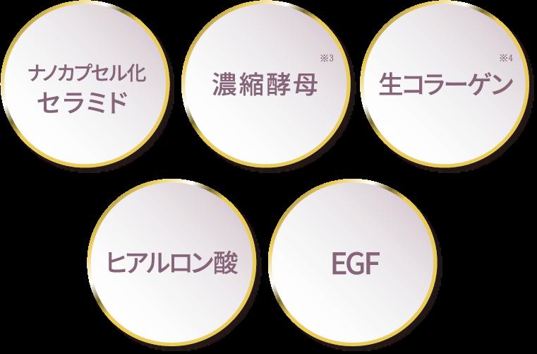ナノカプセル化セラミド/濃縮公募※3/生コラーゲン※4/ヒアルロン酸/EGF