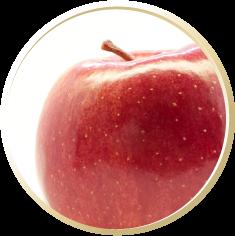 リンゴ幹細胞エキス