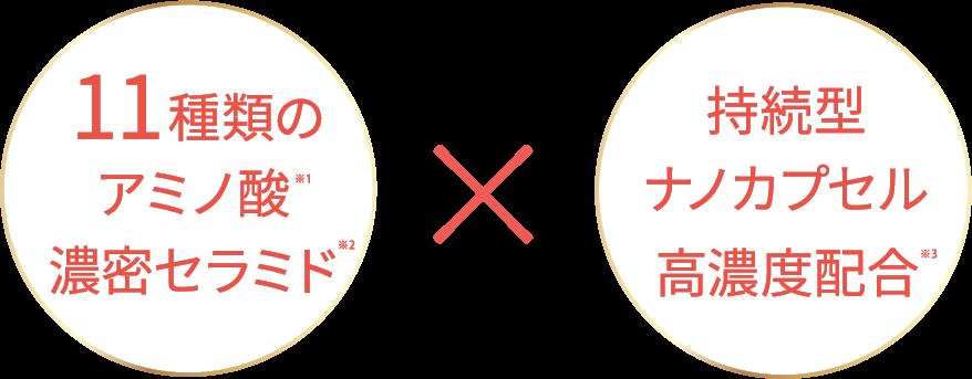 11種類のアミノ酸濃密セラミド × 持続型ナノカプセル高濃度配合
