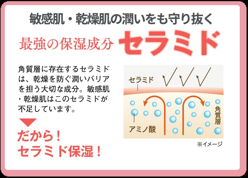 敏感肌・乾燥肌の潤いを守り抜く 最強の保湿成分セラミド